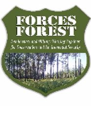 FORCES FOREST