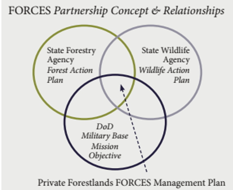 FORCES Partnership Concept and Relationships